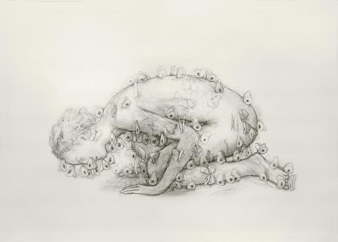 Juul Kraijer - Galerie Les filles du calvaire