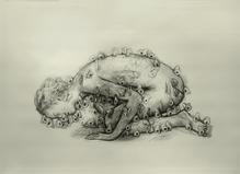 Juul Kraijer - Les filles du calvaire Gallery