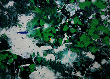 DanHôo - A2Z Art Gallery