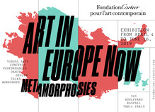 Metamorphosis. Art in Europe now - Fondation Cartier pour l'art contemporain