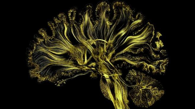 Mutations / Créations - Centre Georges Pompidou