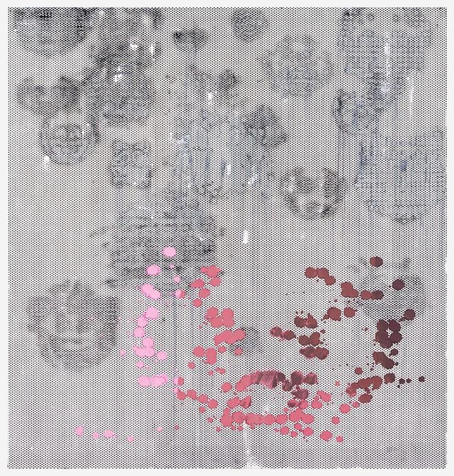 Greene Naftali Gallery at Galerie Chantal Crousel - Galerie Chantal Crousel