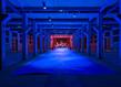Martine aballea resurgence les tanneries 2021 photo margot montigny courtesy artiste %c2%a9martine aballea adagp paris 2021 7827 photo principale 2 grid