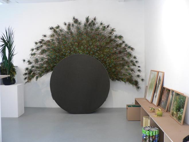 Vue d'exposition à la galerie KernotArt