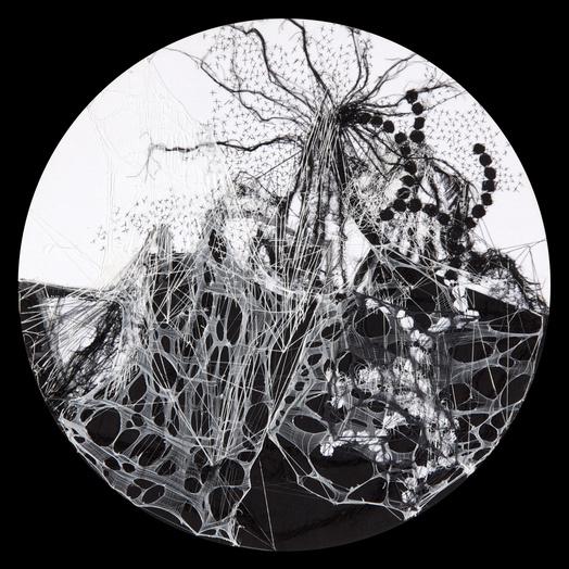 Brankica zilovic an momorphose  2010 fil et textile sur toile  diam tre 60 cm   courtesy galerie charlotte norberg medium