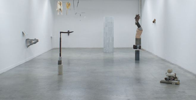 Aymeric Ebrard, Le Rayon de Schwarzschild, Palais de Tokyo, 2010