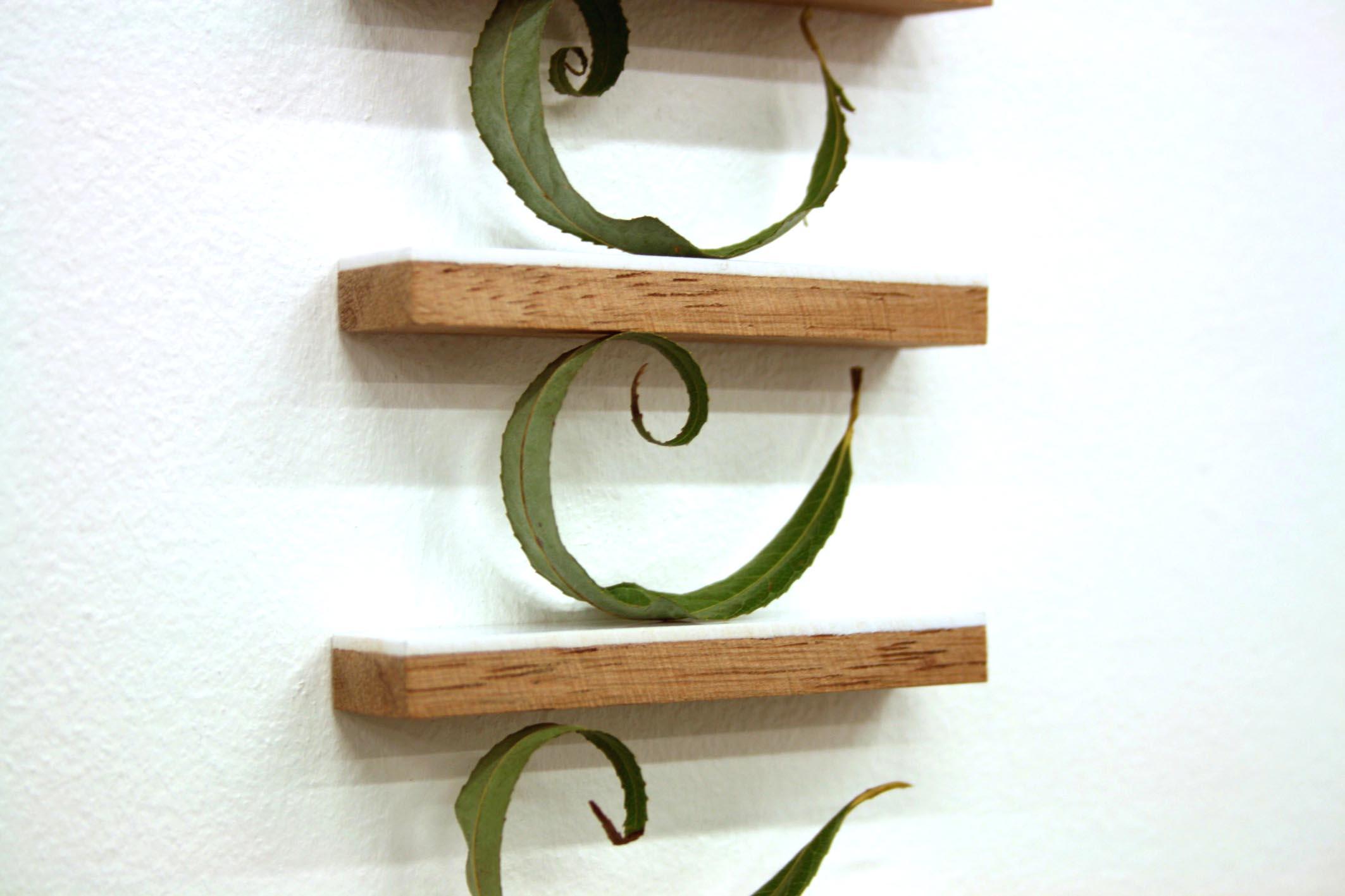 Mobilier pour feuilles de saule pleureur original