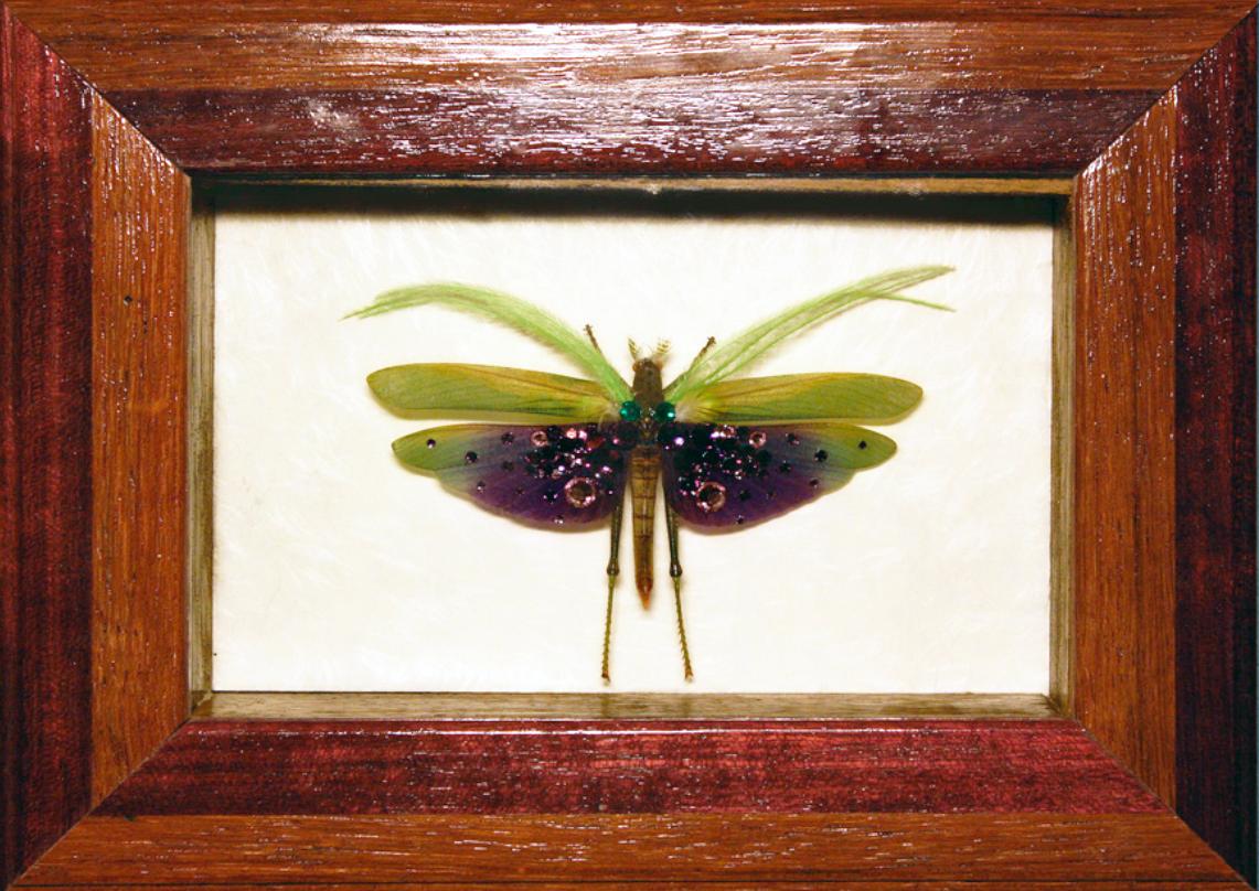 5 trucdefille ptesauterelle original original