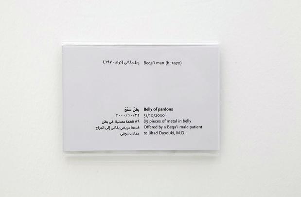 Les artistes libanais à la Triennale de Paris