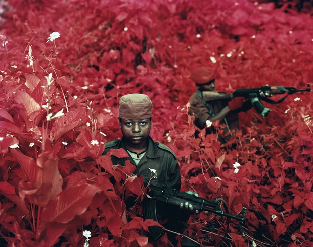 Vintage violence   richard mosse medium