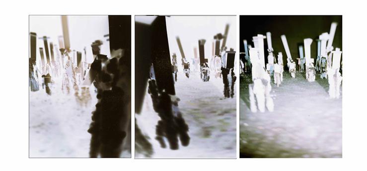 Thibault Hazelzet, La Parabole des Aveugles, Triptyque #1, 2012