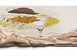 Mirage vii 40x80 cm crayon de couleur pyrogravure placage et sculpture sur bois 2012   yoon ji eun grid