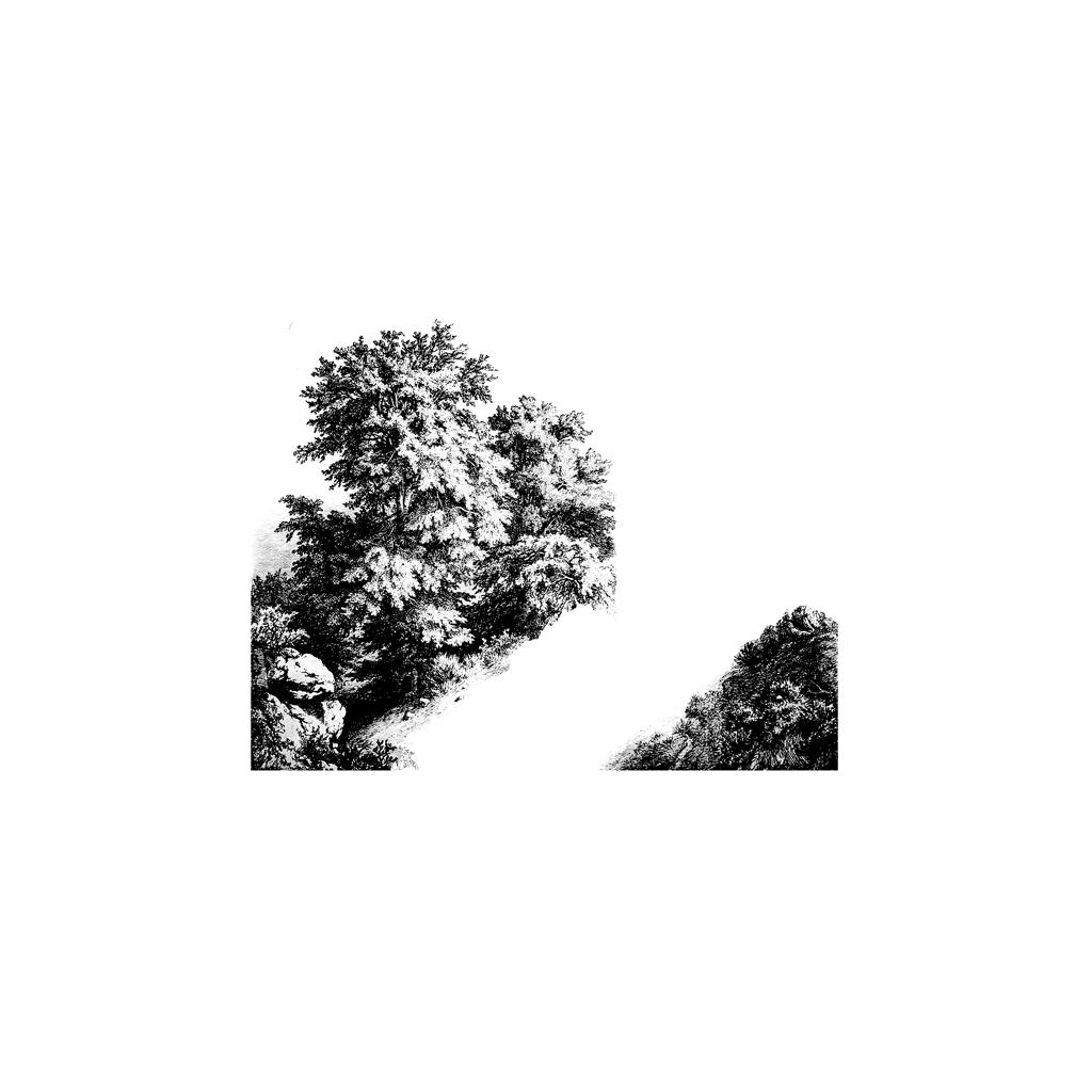 Leprecipe 2011 dessin feutre 37x43cm original