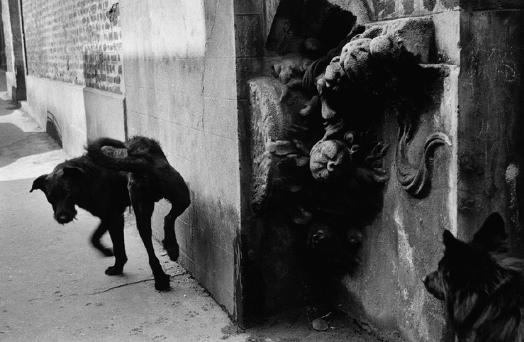 Sergio Larrain, La Ruche. Paris, 1959
