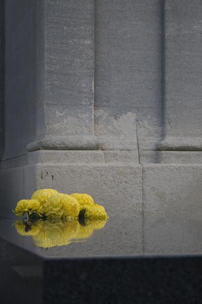 Marion brossard chrysanth mes medium