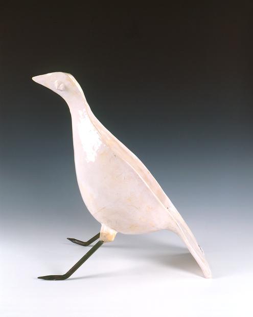 Oiseau guidette medium