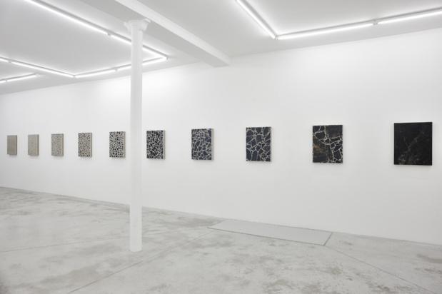 Galerie praz delavallade analia saban outburst big bang series vue exposition medium