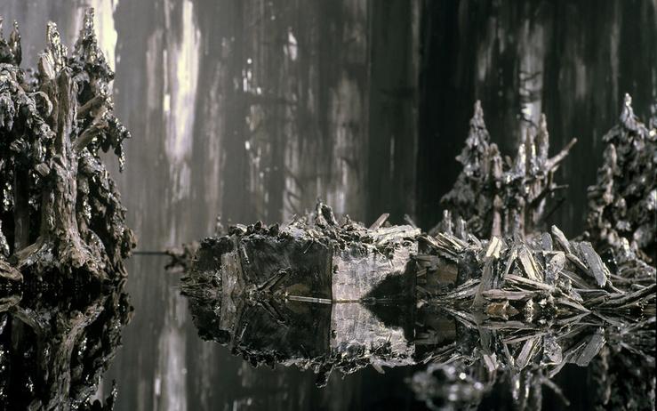 Anne Wenzel, Silent Landscape, 2006—160 x 300 x 500 cm