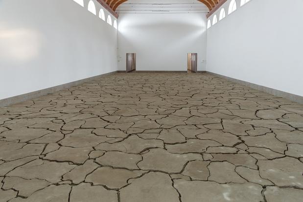 Palais de tokyo dominique ghesquiere terre de profondeur 2013 medium