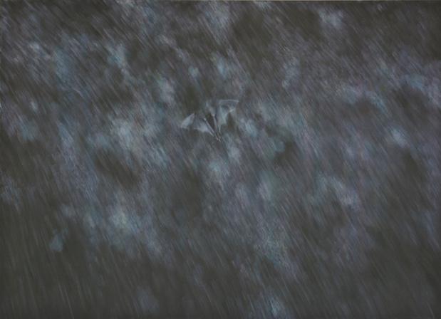 Topographie de lart mauvaises graines tami ichino fly in the rain medium