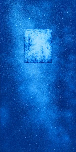 Topographie de lart mauvaises graines eric winarto blacklight selva constellation medium