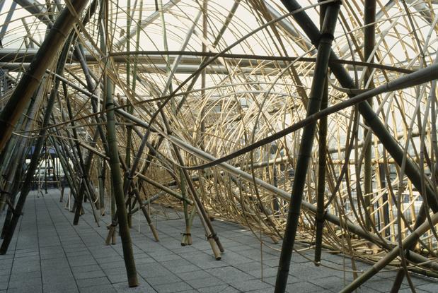 Hiroshi teshigahara passage de bambous 1989 medium