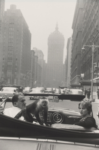 Jeu de paume garry winogrand park avenue new york medium