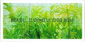 Brasil ld medium