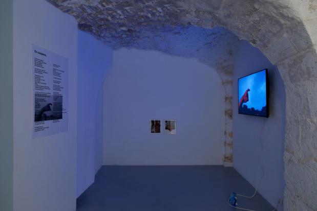 Galerie dohyang lee paysage sur paysage julien creuzet medium