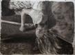 Kz bonnie 2013 encre de chine sur papier de riz 140 x 190 cm grid
