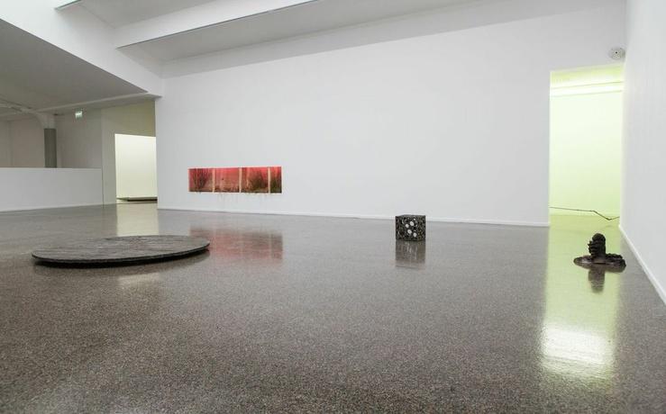 Pierre Vadi, «Plus d'une langue» au Centre culturel suisse, Paris 2014