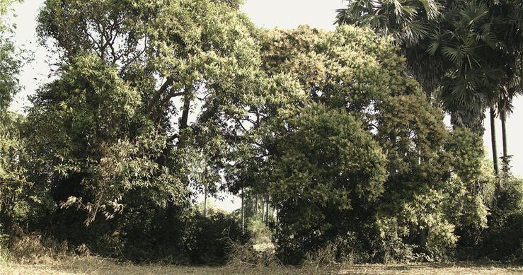 Vandy Rattana, Monologue, 2015—Vidéo HD, 16/9 couleur, son, 18 min 55 s.