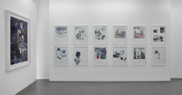 Vue de l'exposition Vincent Bizien, Animal populaire, galerie Maïa Muller, Paris, 2015