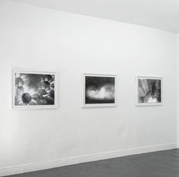 Galerie sator eric manigaud vue exposition medium