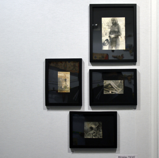 Miroslav tichy medium