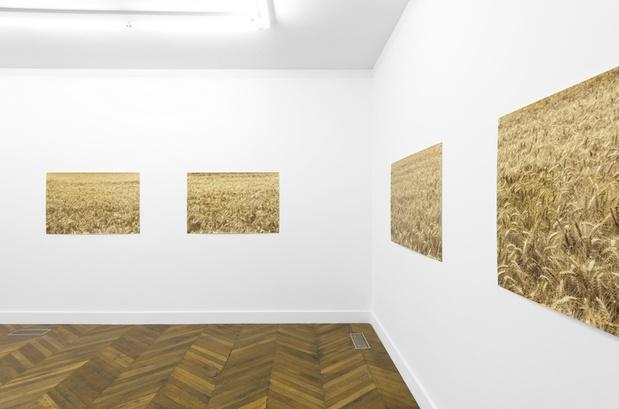 Pierre joseph hypernormandie la galerie 4 medium