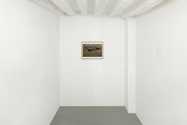Galerie dohyang lee mousai muses 04 medium
