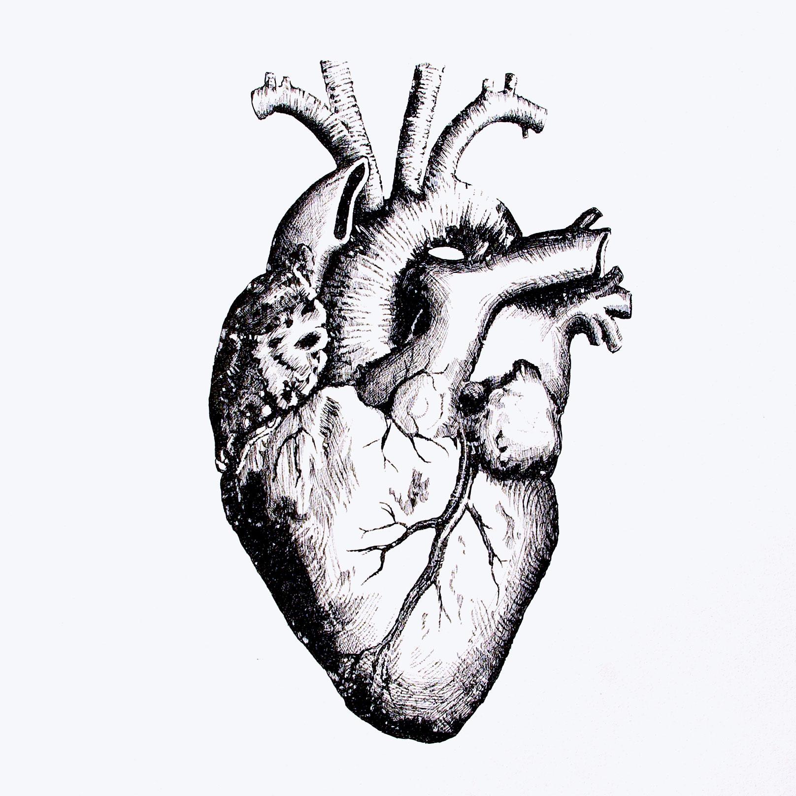 8.coeur encre sur papier 50x50cm 2014 original