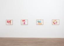 Mika Rottenberg—Galerie Laurent Godin