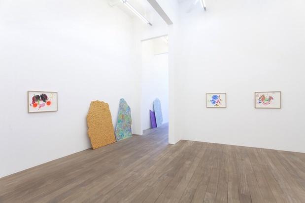 Mika rottenberg galerie laurent godin 2 medium