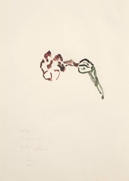 Galerie bernard bouche bernd lohaus fleur 2003 medium