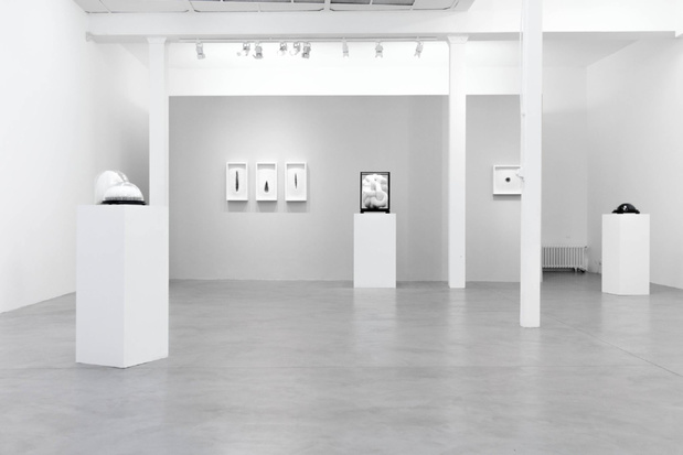 Galerie particuliere kate mccgwire vue expo medium