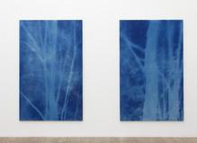 Philippe Durand—Galerie Laurent Godin