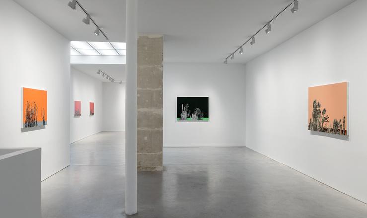 Vue d'exposition Whitney Bedford, Bardo Parade, Art : Concept, Paris, 10 février—1 avril 2017