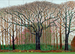 David hockney bigger trees near warter or... 2007 huile peinte sur 50 toiles david photo prudence cuming associates collection tate london grid
