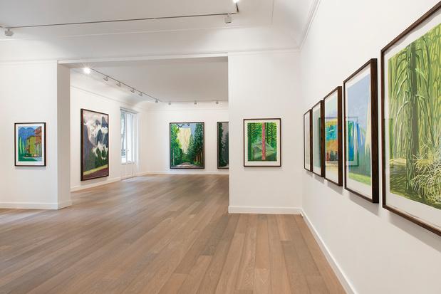 Expo david hockney galerie lelong vue 2 medium