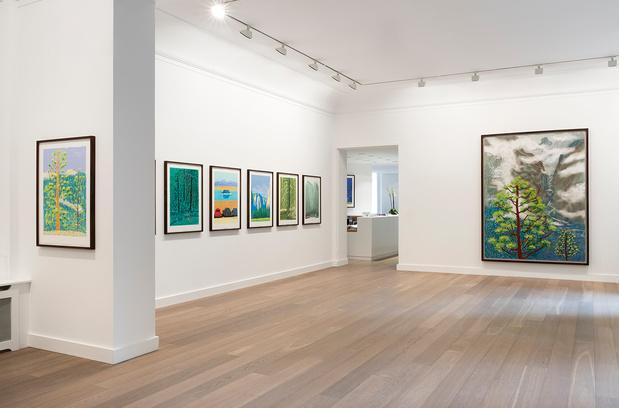 Expo david hockney galerie lelong vue 3 medium