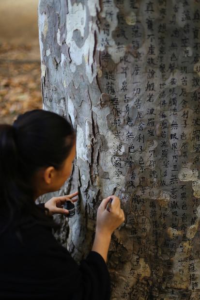 Visuel charwei tsai%20%281%29 medium