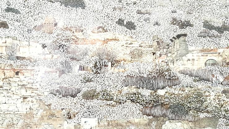 Raphaëlle Peria, vue de l'exposition Marinus Asiaticus, galerie Papillon, 2017