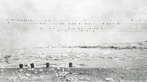 Biennale photographie monde arabe 1 medium